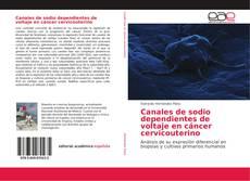 Borítókép a  Canales de sodio dependientes de voltaje en cáncer cervicouterino - hoz