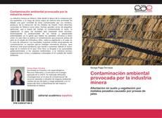 Couverture de Contaminación ambiental provocada por la industria minera