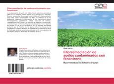 Bookcover of Fitorremediación de suelos contaminados con fenantreno