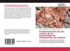 Couverture de Contaminación de los suelos de la comunidad de Vetagrande por plomo