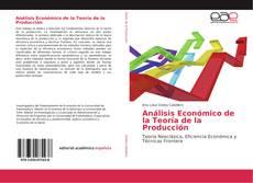 Bookcover of Análisis Económico de la Teoría de la Producción