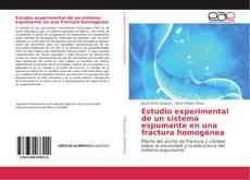 Bookcover of Estudio experimental de un sistema espumante en una fractura homogénea