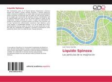 Buchcover von Líquido Spinoza
