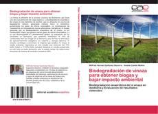 Обложка Biodegradación de vinaza para obtener biogas y bajar impacto ambiental