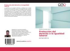 Bookcover of Protección del derecho a la igualdad laboral