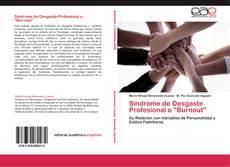 """Bookcover of Síndrome de Desgaste Profesional o """"Burnout"""""""