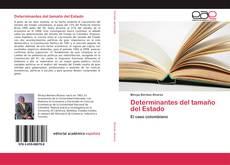 Buchcover von Determinantes del tamaño del Estado