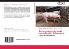 Capa do livro de Factores que afectan la reproducción del verraco