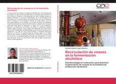 Обложка Recirculación de vinazas en la fermentación alcohólica