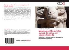 Manejo genético de los ovinos de pelo en el trópico húmedo kitap kapağı