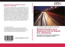 Metales Pesados en el Sedimento Vial de Bogotá D.C. (Colombia)的封面