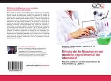 Borítókép a  Efecto de la Niacina en un modelo experimental de obesidad - hoz