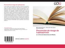 Buchcover von Prevención de riesgo de Leptospirosis
