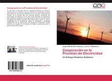 Buchcover von Cooperación en la Provisión de Electricidad