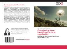 Bookcover of Caracterización e identificación de la vegetación