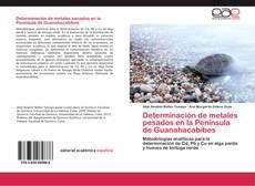 Determinación de metales pesados en la Península de Guanahacabibes kitap kapağı