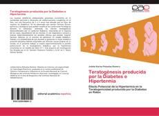 Buchcover von Teratogénesis producida por la Diabetes e Hipertermia
