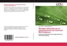 Bookcover of Riesgos laborales en el departamento de Ciencias Morfológicas