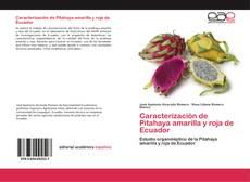 Bookcover of Caracterización de Pitahaya amarilla y roja de Ecuador
