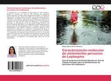 Bookcover of Caracterización molecular de aislamientos peruanos de Leptospira