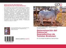 Buchcover von Determinación del Potencial Reproductivo de Toretes Brahman