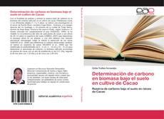 Bookcover of Determinación de carbono en biomasa bajo el suelo en cultivo de Cacao