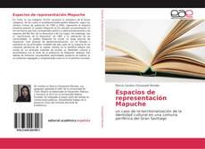 Capa do livro de Espacios de representación Mapuche