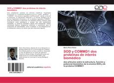 Couverture de SOD y COMMD1 dos proteínas de interés biomédico