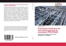 Bookcover of Evaluación hidráulica de una red de gas con el simulador PIPEPHASE