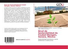 Buchcover von Nivel de Sostenibilidad de Ciudad Obregón, Sonora, México