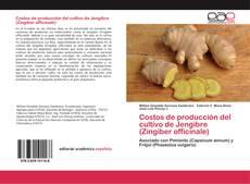 Обложка Costos de producción del cultivo de Jengibre (Zingiber officinale)