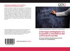 Borítókép a  Liderazgo pedagógico en la gestión y monitoreo del currículum escolar - hoz