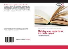 Portada del libro de Matrices no negativas estructuradas