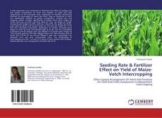 Bookcover of Seeding Rate & Fertilizer Effect on Yield of Maize-Vetch Intercropping