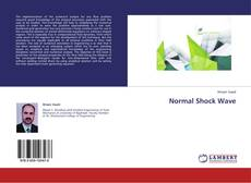 Bookcover of Normal Shock Wave