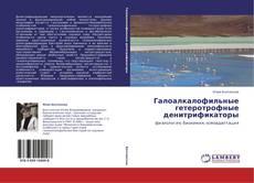 Copertina di Галоалкалофильные гетеротрофные денитрификаторы