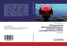 Copertina di Методология функционирования и развития сферы государственных услуг