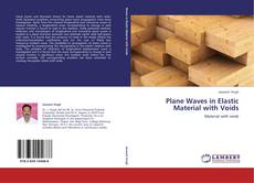 Copertina di Plane Waves in Elastic Material with Voids