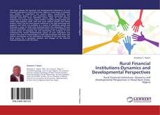 Bookcover of Rural Financial Institutions:Dynamics and Developmental Perspectives