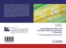 Bookcover of Land fragmentation and technical efficiency of farms in Rwanda