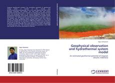 Copertina di Geophysical observation and hydrothermal system model