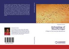 Capa do livro de Archaeology of  Muzaffarnagar