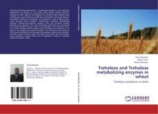 Copertina di Trehalose and Trehalose metabolizing enzymes in wheat
