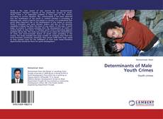 Couverture de Determinants of Male   Youth Crimes
