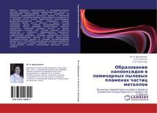 Bookcover of Образование нанооксидов в ламинарных пылевых пламенах частиц металлов
