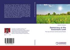 Bookcover of Democracy at the Grassroots Level