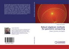 Buchcover von Robust algebraic methods for geometric computing