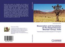 Bookcover of Biozonation and Correlation of the Neoproterozoic Bhander Group, India