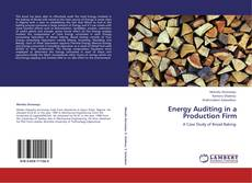 Bookcover of Energy Auditing in a Production Firm