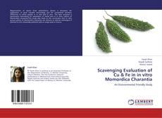 Bookcover of Scavenging Evaluation of Cu & Fe in in vitro Momordica Charantia